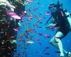 diving_in_turkey