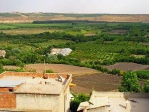 turkey-agriculture-farming-fields.jpg.400x300_q90_crop-smart