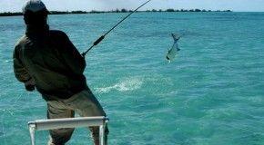 Рыбалка в Турции: особенности