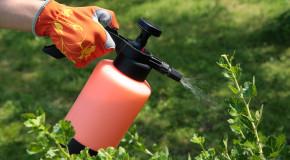 Компания «Игеба ГмбХ» — передовые технологии защиты от вредителей